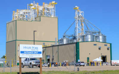 HyLife's New Mill Energizing Company and Region