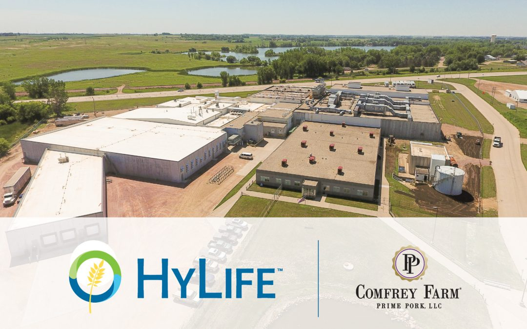 HyLife Purchases US Processing Plant